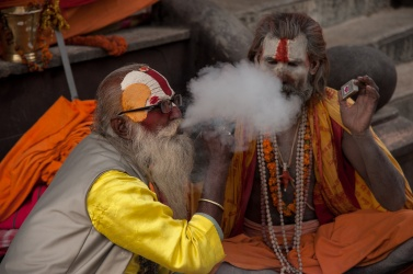 To meditate and get in touch more deeply with Shiva, it is customary during celebrations, mariuana smoking
