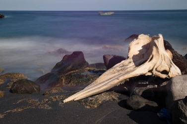 A whale bone. Throughout the village there are hundreds and hundreds of whale bones, on the beach, on the street but also in private courtyards. They are like monuments, in honor of this animal fundamental for the survival of the villagers