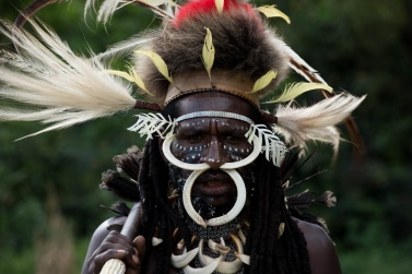 The pig tusks in the nose and neck, the many feathers of the bird of paradise on the head and back, mean that he is a rich and important man in his own tribe