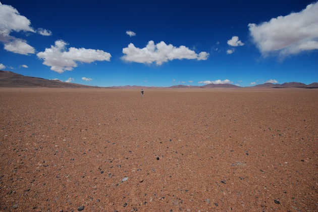 Cile - Deserto di Atacama