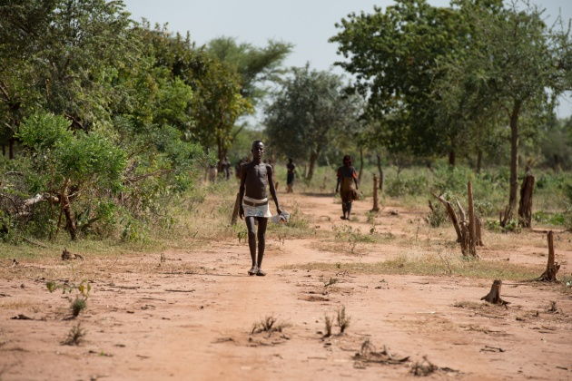 Around the village the typical vegetation of the Omo Valley