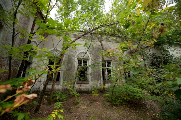 The building that was also home to the theater, completely surrounded by vegetation, in the Chernobyl city
